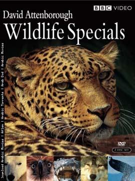 Wildlife Specials