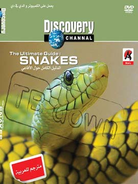 The Ultimate Guide: Snakes