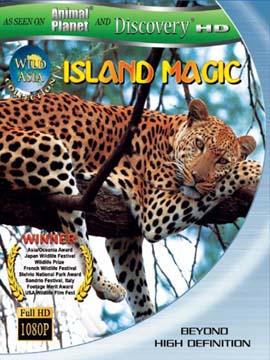 Wild Asia Island Magic