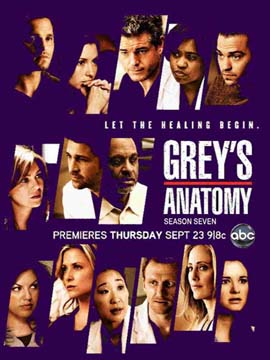 Grey's Anatomy - The Complete Season Seven