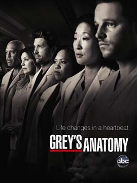 Grey's Anatomy - The Complete Season 9