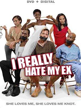 I Really Hate My Ex