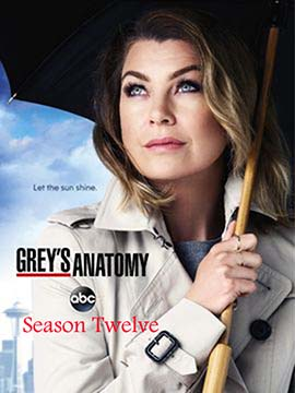 Grey's Anatomy - The Complete Season 12