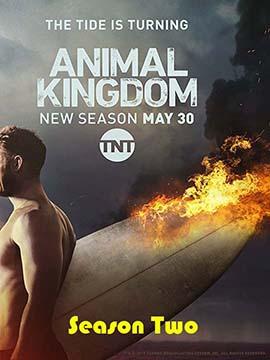 Animal Kingdom - The Complete Season Two