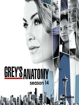 Grey's Anatomy - The Complete Season 14