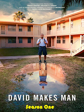 David Makes Man - The Complete Season One