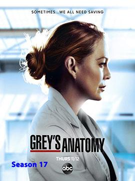 Grey's Anatomy - The Complete Season 17